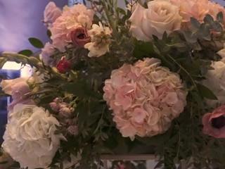 Shaw House Weddings